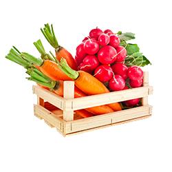 Zbieraj warzywa