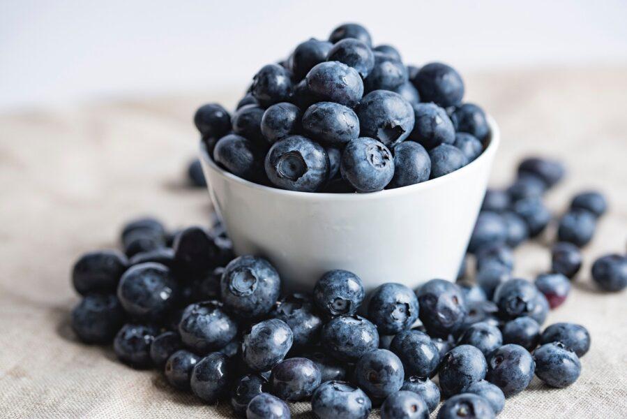 bilberries-2559051_1920