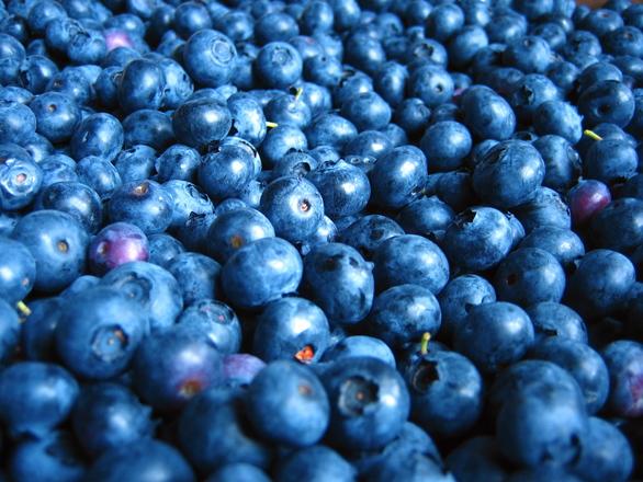 blueberries-1325514
