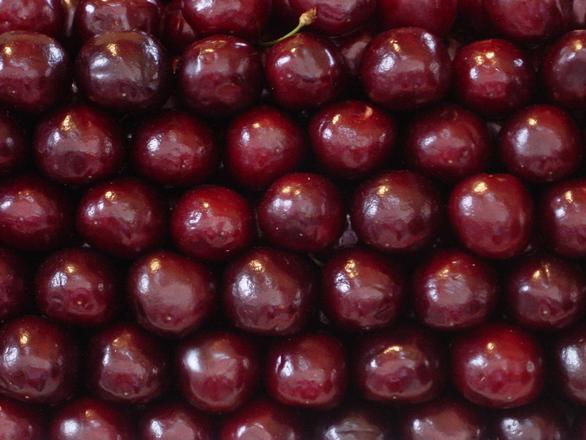 cherries-1471260
